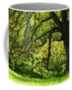 Bathed In Spring Coffee Mug
