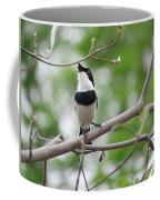Batis Bird Coffee Mug