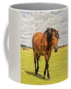 Bay Pony Coffee Mug