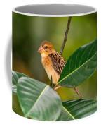Baya Weaver Coffee Mug