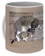 Bazooka's Boardwalk Nap Coffee Mug
