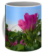 Beach Rose Coffee Mug