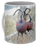 Beach Rose Hips - Rosa Rugosa Coffee Mug
