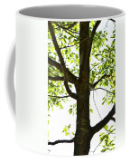 Beach Tree Coffee Mug