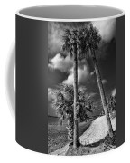 Beach Walk - Port Charlotte Beach Park, Florida Coffee Mug