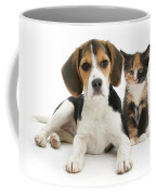 Beagle And Calico Cat Coffee Mug