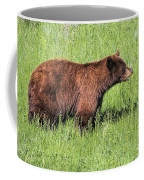 Bear Eating Daisies Coffee Mug