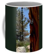 Bear Watch Coffee Mug