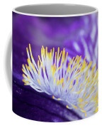 Bearded Iris Macro Coffee Mug
