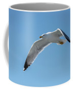 Beating Of Wings Coffee Mug