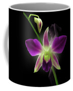 Beauties Coffee Mug