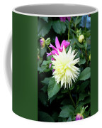 Beautiful And Fresh Dahlias In The Butchrt  Gardens,vancouver Island 2. Coffee Mug