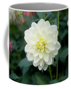 Beautiful And Fresh Dahlias In The Butchrt  Gardens,vancouver Island 3. Coffee Mug