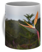 Beautiful Bird Of Paradise Flower In A Tropical Garden  Coffee Mug