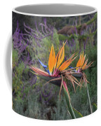 Beautiful Bird Of Paradise Flower In Bloom Coffee Mug