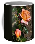 Beautiful Bloom Of The Rose Atlantic Star Coffee Mug