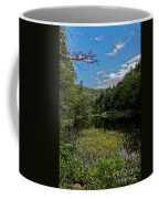 Beautiful Clear Creek Coffee Mug