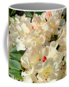 Beautiful Creamy White Pink Rhodies Floral Garden Baslee Troutman Coffee Mug