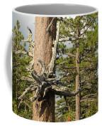 Beautiful Deformity Coffee Mug