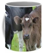 Beautiful Face Of A Brown Calf Coffee Mug