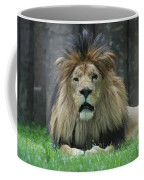 Beautiful Face Of A Male Lion With A Thick Fur Mane Coffee Mug