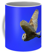Beautiful Flight Coffee Mug