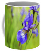 Beautiful Flower Iris Coffee Mug