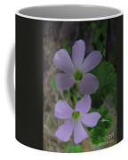 Beautiful Flowers Coffee Mug