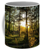 Beautiful Forest At Sunrise Coffee Mug