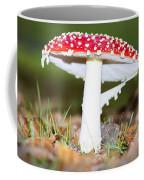 Beautiful Fungus Coffee Mug