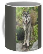 Beautiful Gray Wolf Coffee Mug