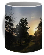 Beautiful Greenery Park In The Afternoon  Coffee Mug