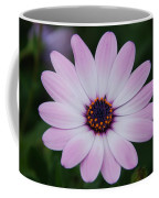 Beautiful In Pink Today Coffee Mug