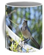 Beautiful Jay II Coffee Mug