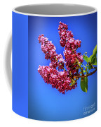 Beautiful Lilac Coffee Mug