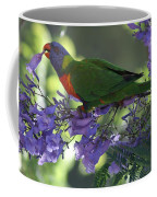Beautiful Lorikeet Coffee Mug