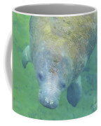 Beautiful Manatee Coffee Mug