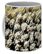Beautiful Marine Plants 4 Coffee Mug