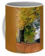 Beautiful Morning Walk In Autumn Coffee Mug