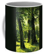 Beautiful Oak Trees Reach To The Skies Coffee Mug