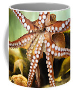Beautiful Octopus Coffee Mug