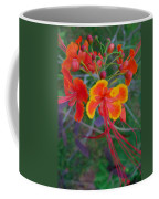 Beautiful Peacock Flower 5 Coffee Mug