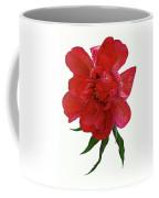 Beautiful Peony Flower. Coffee Mug