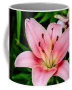 Beautiful Pink Lily Coffee Mug