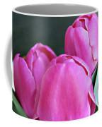 Beautiful Pink Lipstick Coffee Mug