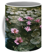 Beautiful Pink Lotus Water Lilies Bloom Coffee Mug