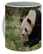 Beautiful Profile Of A Giant Panda Bear Ambling Along Coffee Mug