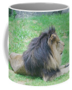 Beautiful Profile Of A Resting Lion In Green Grass Coffee Mug