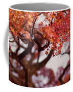Beautiful Red Japanese Maple Tree In A Garden Coffee Mug