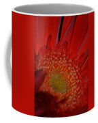 Beautiful Red Coffee Mug